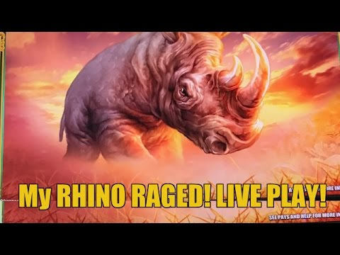 BIG WIN! RAGING RHINO SLOT MACHINE BONUS-LIVE PLAY
