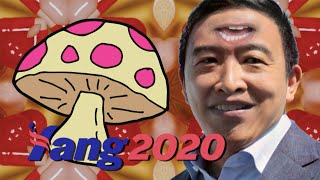 Andrew Yang Approves Of Psychedelic Mushrooms