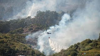 Blaze forces retreat of firefighters tackling Gran Canaria wildfires