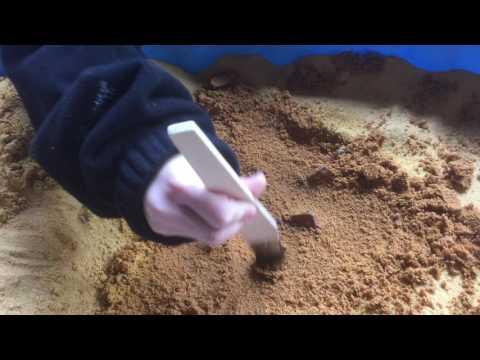 Junior Archaeologists Club - Excavating