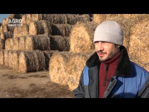 Cu și despre Artur Decusar în emisiunea Gospodarii Moldovei, 6.12.2015