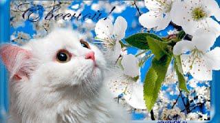 Первый день весны поздравления...