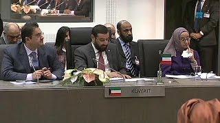 Irans vergeblicher Kampf für geringere OPEC-Förderquoten - economy