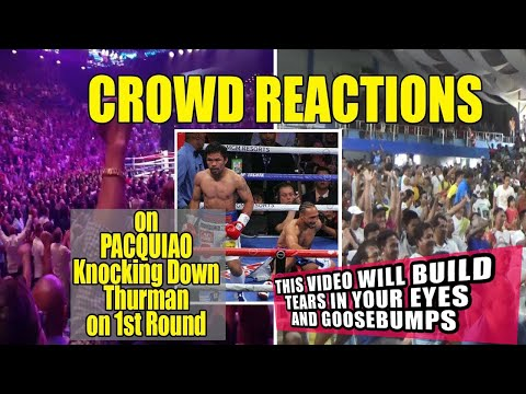 CROWD REACTIONS Compilation