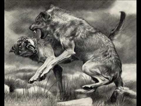 Wolves download bon iver