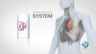 Proflavanol C100 US CA (en) | USANA Video