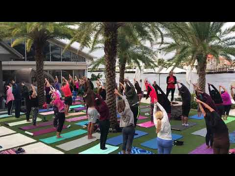 Online Yoga Courses   Yoga Online For Beginners In Fort Lauderdale