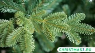Хит 2017 года! Российские искусственные ели Green Trees! Смотрите!(Победитель ТВ-Шоу
