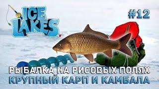 Рыбалка на Рисовых Полях Крупный карп и камбала Ice Lakes 12