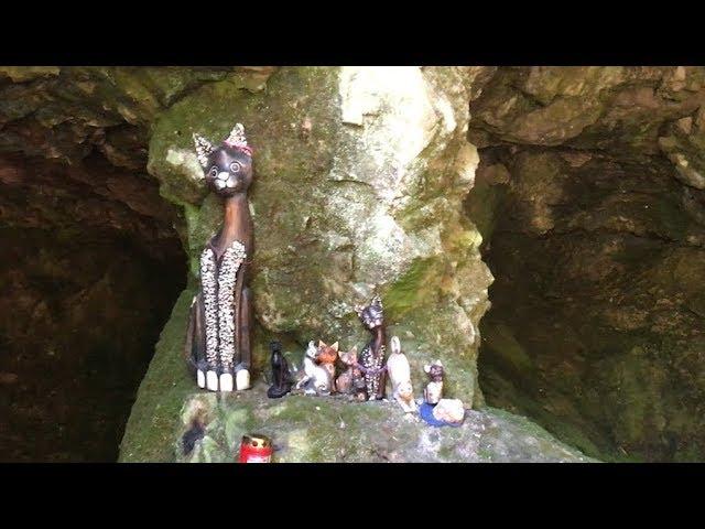 Мистичната богиня Бастет. И ограбват ли историята на България?  S03 E01