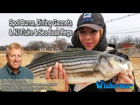 April 12, 2018 New Jersey/Delaware Bay Fishing Report with Jim Hutchinson, Jr.