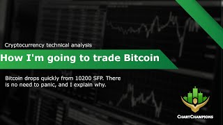 BTC member update. What to expect next and how I'm trading