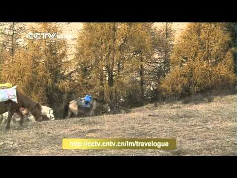 UNESCO World Heritage: snow-studded valleys of Siguniang Mountain