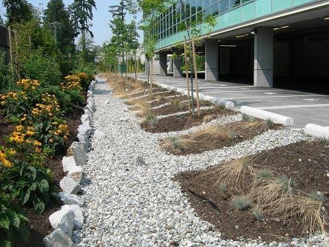 Innovative Stormwater Management at the Property Scale