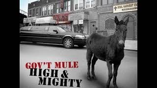 """Gov't Mule - """"Child Of The Earth"""""""