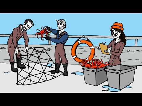 Co-Management Of Fish & Wildlife In Nunatsiavut