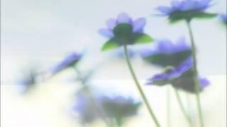 別れの曲 平原綾香 song by pianopiano