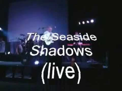 The Seaside Shadows ft  Pete Korving Conquest of Paradise (live)