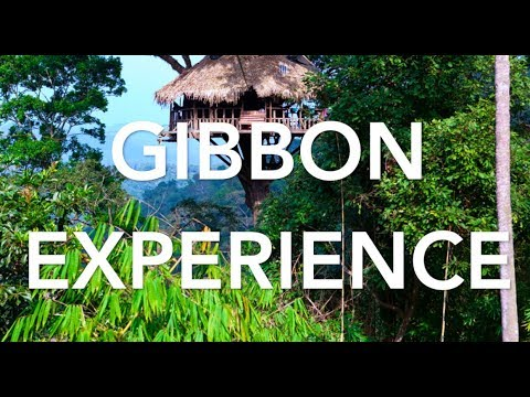 GoPro: The Gibbon Experience | Laos | Summer 2015