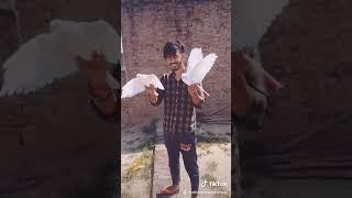 2 cheene , khan bhaini new song