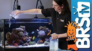How To: Dosing Two Part in Your Reef Tank(http://brs.li/2partdosing So why do they call it two part when there are really three parts? Why can't I mix everything and add it to my tank? These questions and ..., 2014-01-10T18:00:18.000Z)