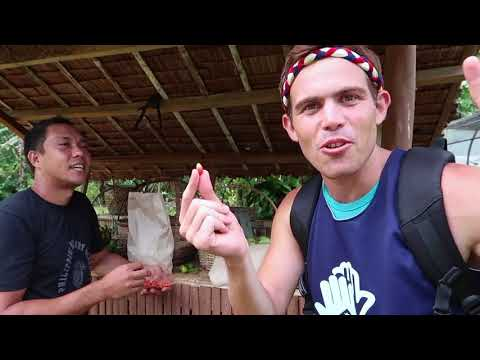 We ate MAGIC BERRIES in the Philippines and BLUE RICE! (Not a Joke!)