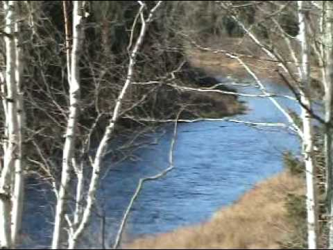 200 Acres, Maine Land On Two Waterfronts..St Croix River, Blackwater Stream. Watch The Video.