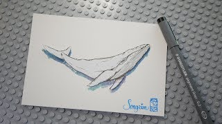ASMR 손그림 그리기 고래 그리기 강좌 - 수채화와 캘리그라피(보너스)