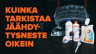 Vaihtaa Koiranluu VW MULTIVAN -autoon - vaihtovinkit