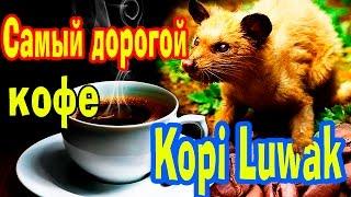 Кофе Самый Дорогой в мире!