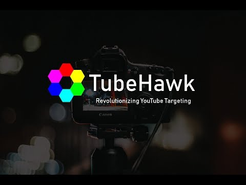 TubeHawk   Revolutionizing YouTube  Audience Targeting For TrueView Advertising