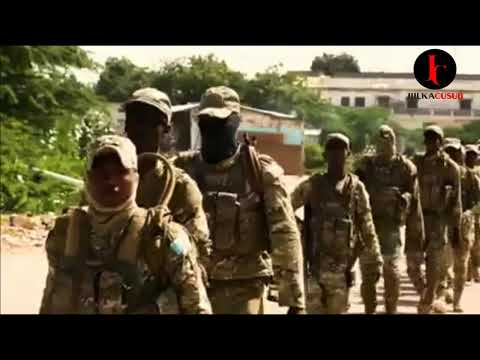 Somali Armed Forces  - Ciidanka Xoogga dalka Soomaaliyeed - Calanka - jiilka Cusub