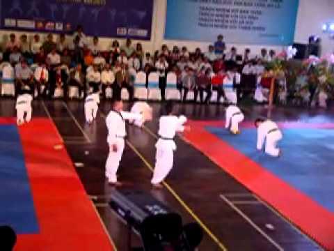 Biểu diễn taekwondo Vn