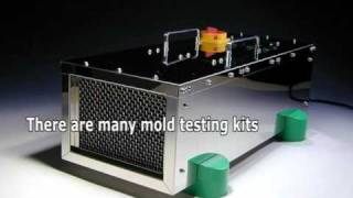 Difference between mold tester and mold contractors