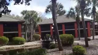 Куда выгодно вложить деньги?  Инвестиции в недвижимость США. Город Palm Coast - GREEN CITY ДЛЯ ЖИЗНИ