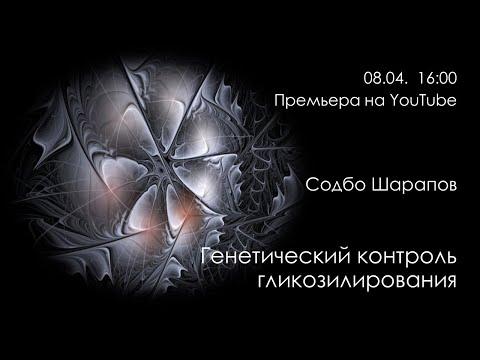 С. Шарапов. Генетический контроль гликозилирования
