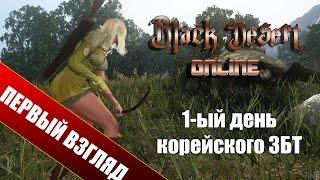 Первый взгляд на ЗБТ Black Desert Online Толпы корейцев и жуткий пинг (первый взгляд, gameplay)