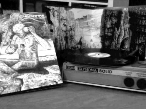 BUSHFIRE - HEAL THY SELF - 2013 - FULL ALBUM