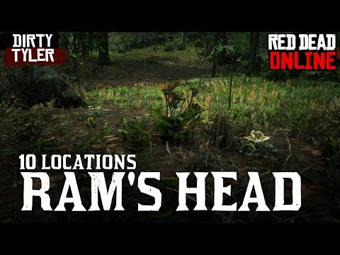 rams head locations for daily challenges red dead online rdr2 youtube rams head locations for daily challenges red dead online rdr2