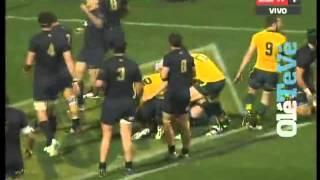 Australia vs Los Pumas - Rugby Championship