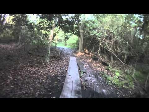 Markham Park Mountain Bike Trail Highlights.