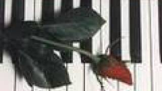 First Love (Wedding Piano Version) - Utada Hikaru