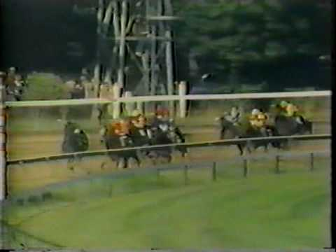 1984 Travers Stakes