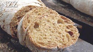 Unser täglich Brot - Dokumentation von NZZ Format (2006)