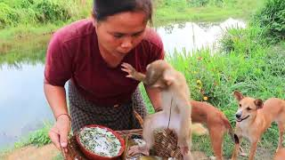 survival in the rainforest - cooking crocodile egg for dog & woman - Eating delicious HD
