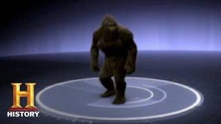 MonsterQuest: Grassman Sighting | History