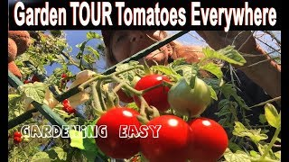Vegetable Garden Tour-How to Grow Lots of Tomatoes Zucchini Ginger-Compost in Place-Container-Summer