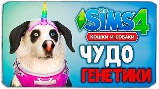 ЧУДО ГЕНЕТИКИ, СОБАКИ - The Sims 4