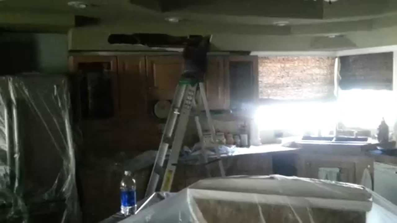 Raccoon Removal In Attic How To Get Raccoons Out Of A
