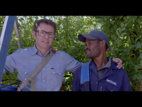 Stefan Gates' South African Taste Adventure -- Working on a Fruit Farm